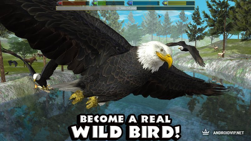 скачать игру Ultimate Bird Simulator на андроид - фото 4