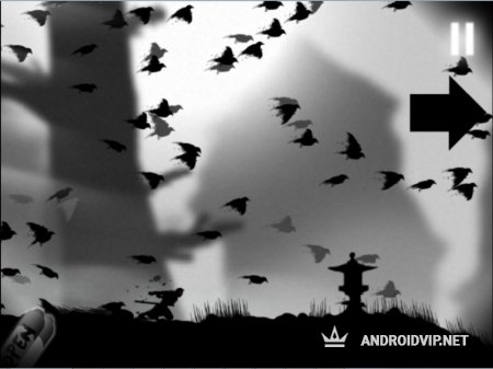 Dead Ninja Mortal Shadow