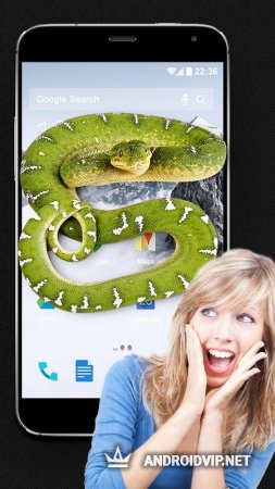 Змея на экране Joke