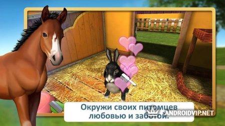 PetWorld: приют животных