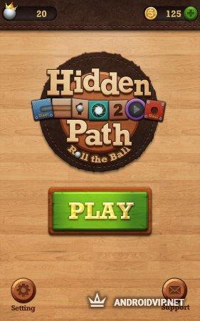 Roll the Ball: Hidden Path