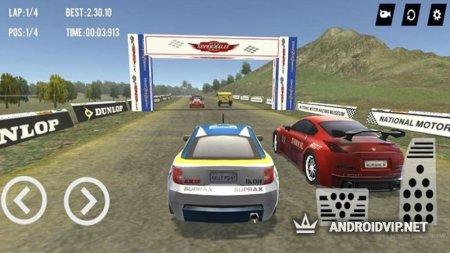 Super Rally 3D (No Ads)