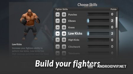 MMA Manager