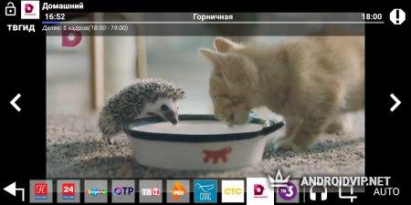 Цифровое ТВ 20 каналов бесплатно
