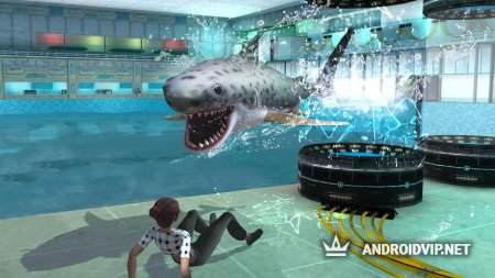 Whale Shark Attack Simulator